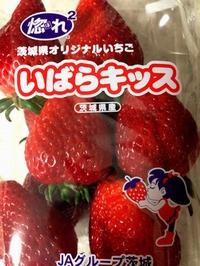 いばらkiss_01.jpg