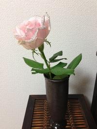 ばらステキ.jpg