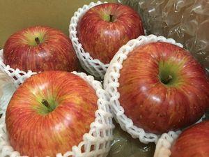 りんごごりら.JPG