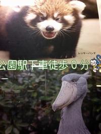 ポスター01.jpg